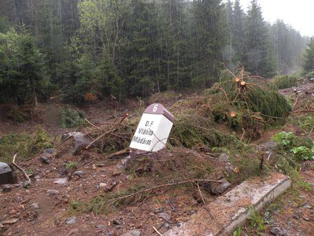 Informatia Harghitei E de acceptat distrugerea naturii în speranţa unor incerte rezultate viitoare Incidentul Vârghiş