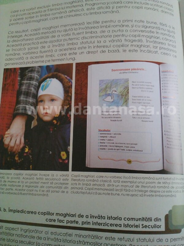Raport UDMR discriminare Antena 3 Sabina Elena limba maghiara 5