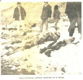 Foto: momentul deshumării și cercetării victimelor.