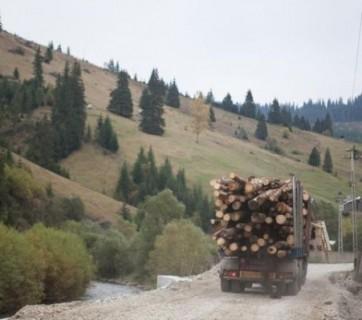 camion cu lemne